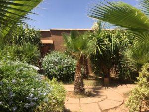 eco farms marrakech